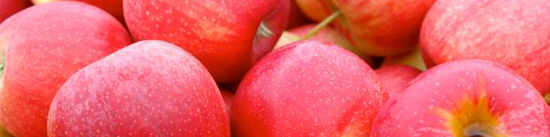 HERO apples 1920x480